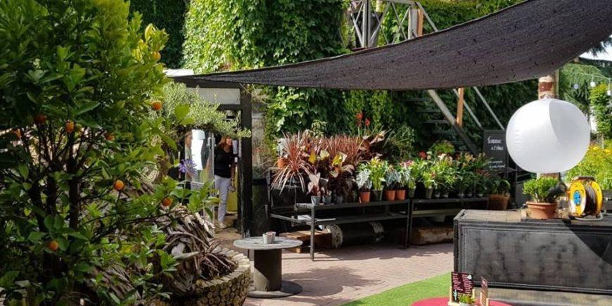 Fêtons ensemble la journée mondiale du bien-être à la Jardinerie du Chalet à Neuilly Plaisance