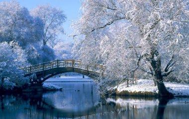 Le shiatsu & l'hiver